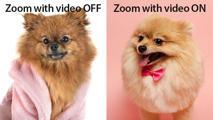 Zoom how you like - Video On or Off